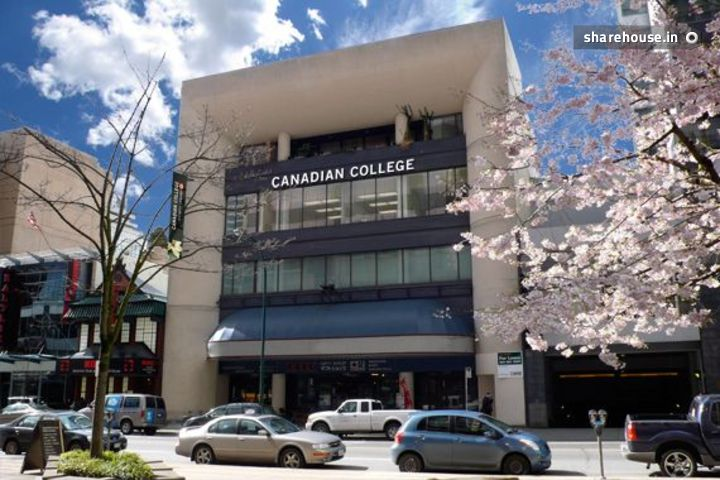 Canadian College of English Laungage